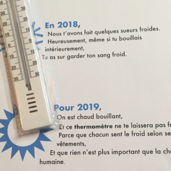 Apercu_Article_Thermomètre